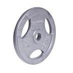 Obciążenie stalowe inSPORTline Hamerton 15 kg
