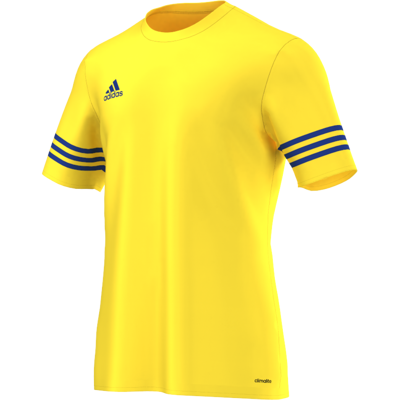 Koszulka piłkarska Adidas Entrada 14 JR F50489
